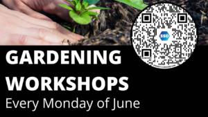 SSD Gardening Workshops: Botanical Drawings @ Zoom